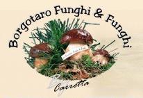 Borgotaro Funghi & Funghi